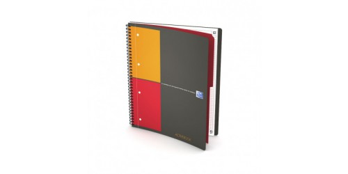 Oxford Int. Activebook A4+ geruit