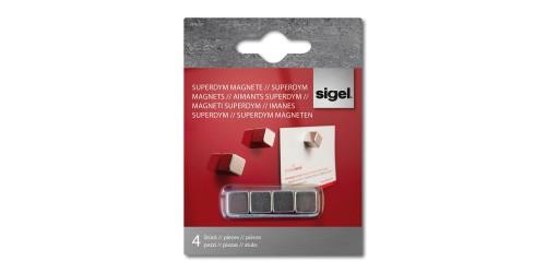 Sigel Magneet zilver 10x10x10mm